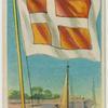 Denmark pilot flag.