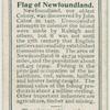 Flag of Newfoundland.