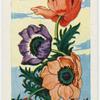 L'anemone.
