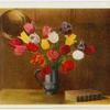 [May flowering tulips.]