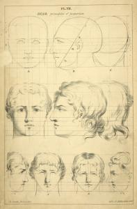 Heads - principles of proportion.