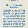 Hyacinth (Hyacinthus).