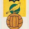 Norwich City (Colours yellow & green).