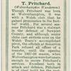 T. Pritchard (Wolverhampton Wanderers).