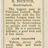 N. Beckton, Sandringham.