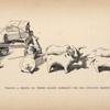 Wagon à bœufs en terre glaise fabriqué par des enfants Bassoutos.