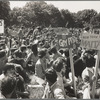"Gay ""Be-In,"" Sheep Meadow, Central Park, New York, June 28, 1970 [1]"
