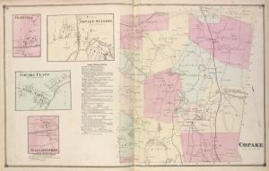Charyville [Village]; Copake Station [Village]; Copake Flats [Village]; Gallatinville [Village]; Copake Business Notices.; Copake [Township]