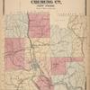 Plan of Chemung Co., New York