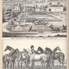 Farm & Residence of J. Fitch ESQ., Aurelius Township, Cayuga Co., N.Y.; Group of Fine Horses Belonging to J. Fitch, ESQ., Aurelius, Cayuga Co., N.Y.