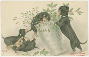 [Dogs playing with vase of mistletoe and holly.]