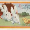 Best Easter greetings.