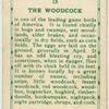 The Woodcock.