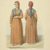 Devushka nizhnei chasti Dona v nariadnom plat'e 1820 g.