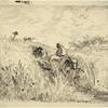 Sentier dans les blés