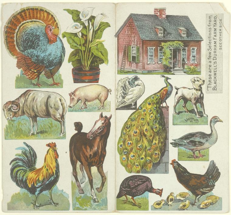 Blackwell's Durham Farmyard [paper house and animals]