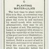 Planting water-lilies.