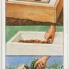 Making a miniature trough or sink garden.