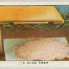 A slug trap.