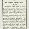 Staking standard trees.