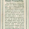 Simple propaggators.