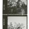 Contact sheet, one strip of negatives
