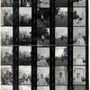 Contact sheet, one roll of film