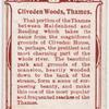 Cliveden Woods, Thames.