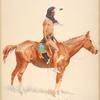A Cheyenne buck.