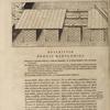 Pons Babylonius à Semiramide constructus, ...