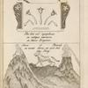 Tab. 16. Flos loti vel nympheae; Shiva et Párvadi in monte Meru.