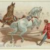 Sensation cut plug [Horses jumping in circus?]