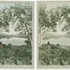 Loch Achray and Loch Vennachar