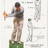 No. 6 Long Chip shot-hanging lie -  W.J. Branch.