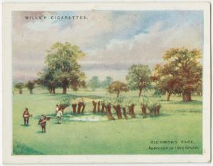 Richmond Park. Richmond Municipal Course, Surrey.