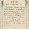Indian mule transport.