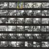 Christopher Street Liberation Day, 1970, contact sheet 4