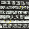 St. Patrick's Cathedral demonstration: contact sheet 1