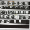 GLF Dance at Alternate University: contact sheet