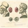 Milziade, Temistocle &c.