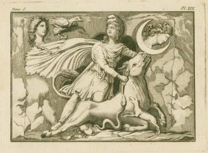 [Mithras sacrificing the bull.... Digital ID: 1623876. New York Public Library