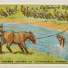 Swimming horses across unfordable stream.