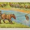 Swimming horses across unfordable stream.