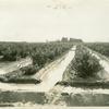 Irrigated vineyard, California]