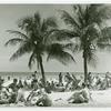 Palms, sea and sun. Miami Beach Florida