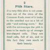 Pith stars.