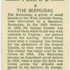 The Bermudas.