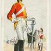 2nd (Royal North British) Dragoons (Scots Greys) (1813). The Royal Scots Greys (2nd Dragoons).