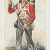 The 690th (South Lincolnshire) (1815).  The Welch Regiment.