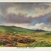 Dartmoor, Deon.